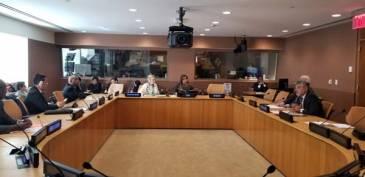 Filmus se reunió con los miembros de la mesa del Comité Especial de Descolonización de la ONU