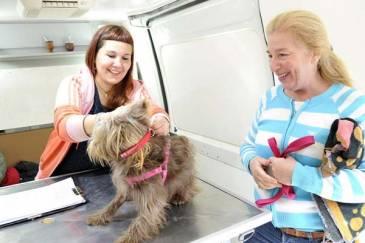 Zoonosis Tigre continúa sus recorridas e incorpora el Registro Municipal de Mascotas